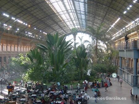 Las tortuguitas de atocha marcos garc a online - Jardin tropical atocha ...