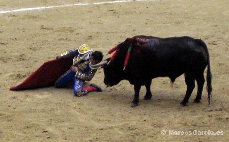 Toros en Pontevedra 2008