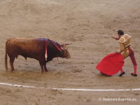 Finito de Córdoba - Toros Pontevedra 2008