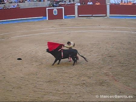 José Tomás - Toros Pontevedra 2008