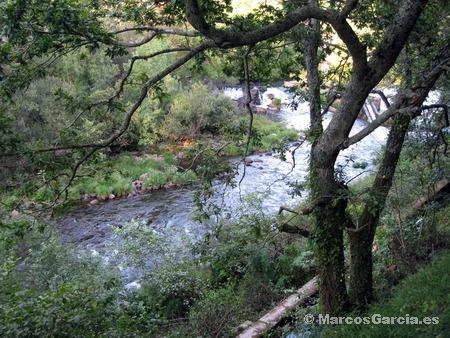 Senda do Río Lérez - Pontevedra
